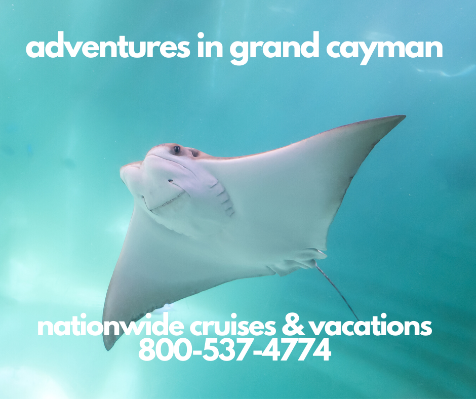 grand cayman stingray city swiming with the dolphins deep see fishing