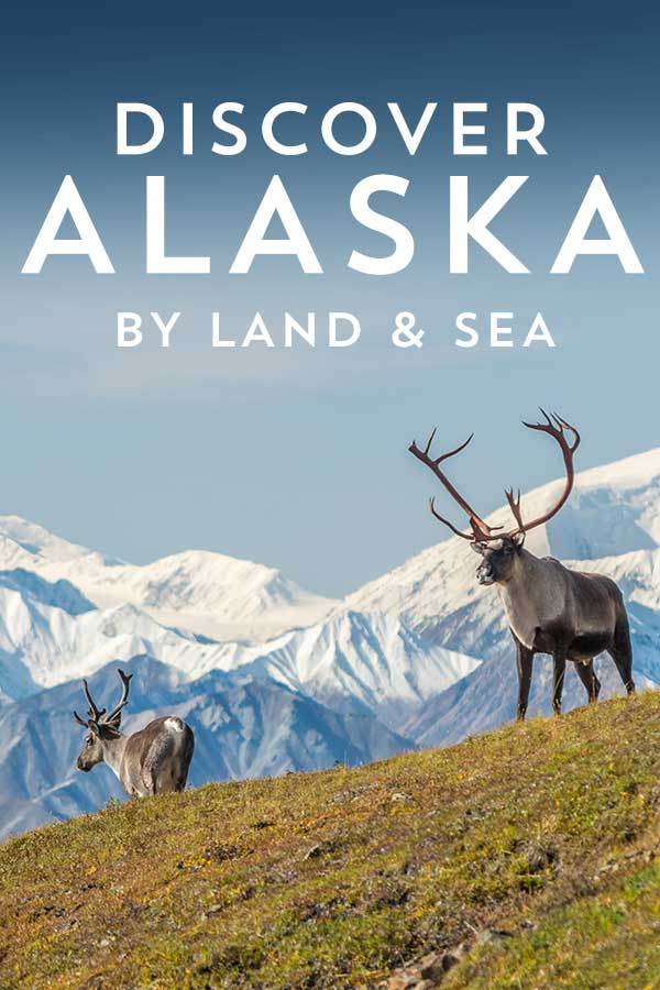 discover alaska by land and sea cruise vacations to alaska